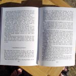 Text in the large print edition of Sworn Sword