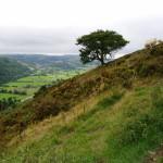 Offa's Dyke Path near Knighton